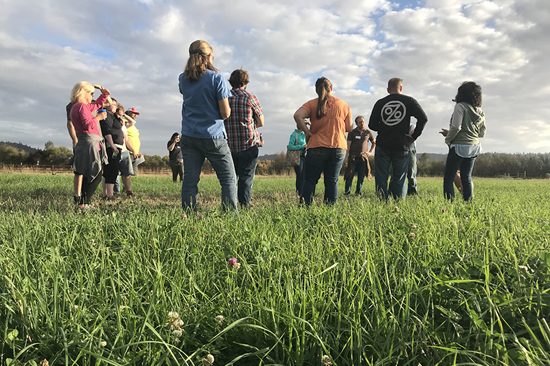 OPN farmers learn from a pasture walk